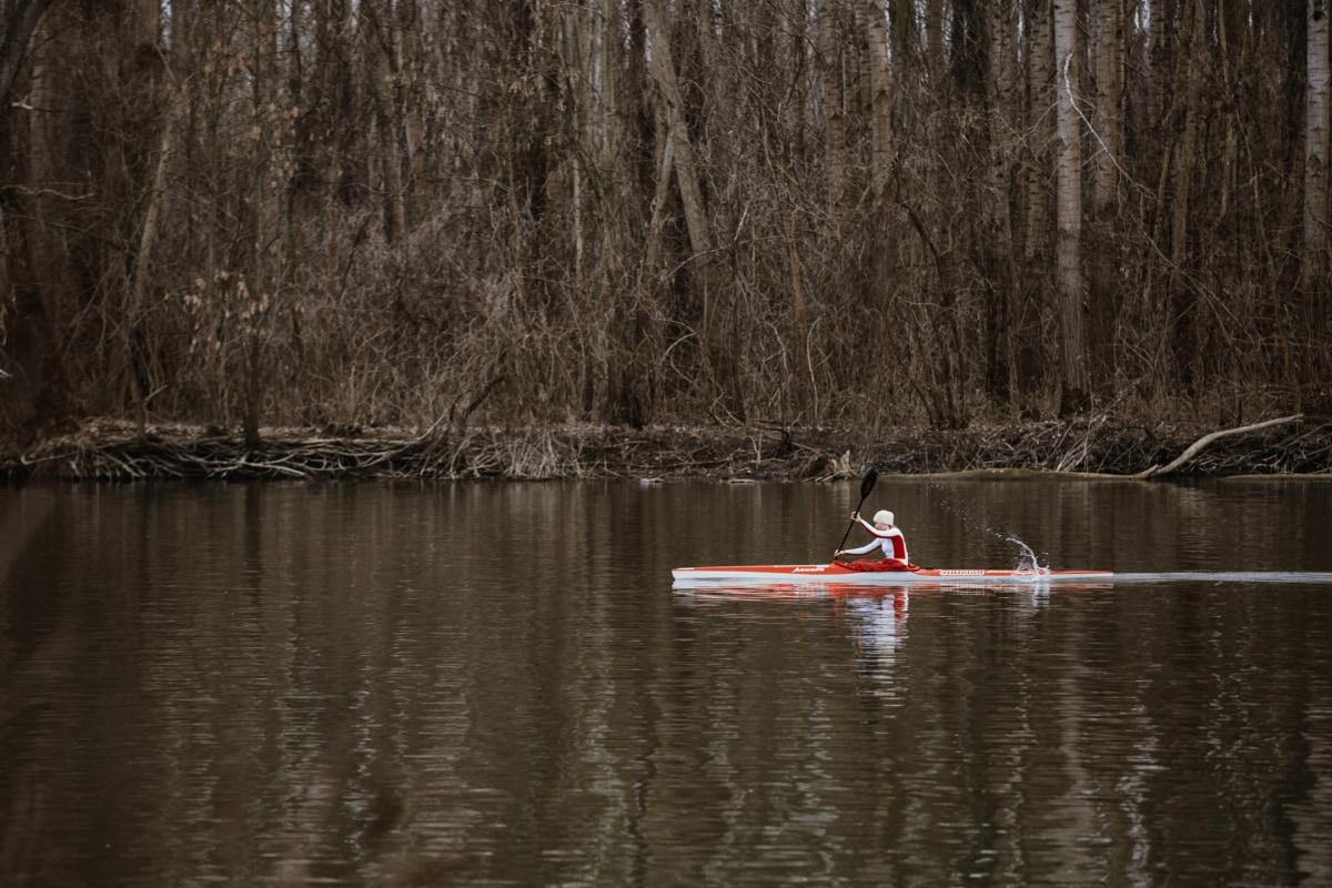 eau, Lac, rame, réflexion, bois, rivière, nature, Hiver, arbre, piscine