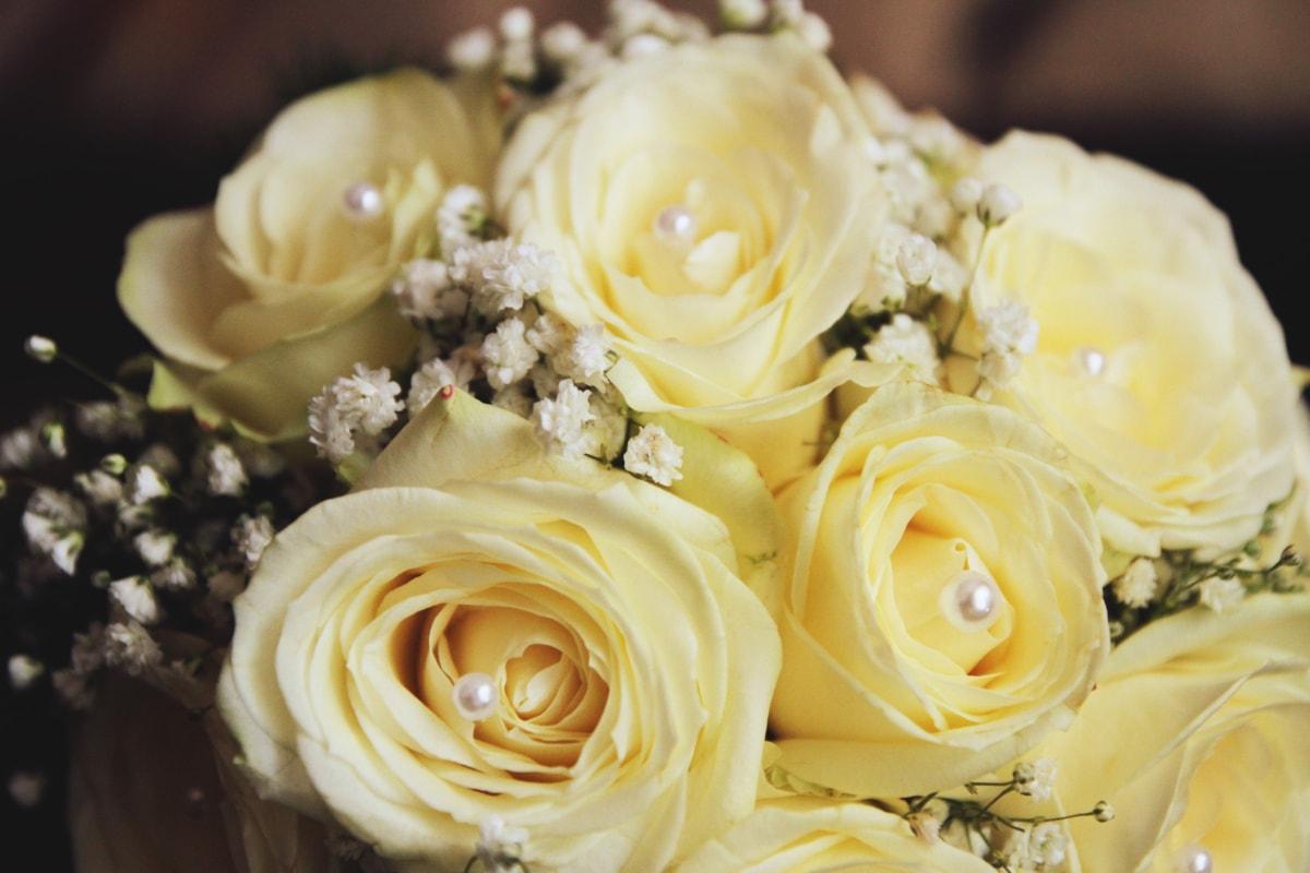 ювілей, букет, подарунок, Кохання, Романтика, Біла квітка, квітка, заручини, наречена, Троянда