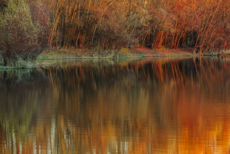 autumn season, water, reflection, river, landscape, forest, lake, tree, shore, pond
