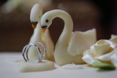 decoration, dessert, swan, wedding cake, wedding ring, wedding, still life, food, love, ingredients