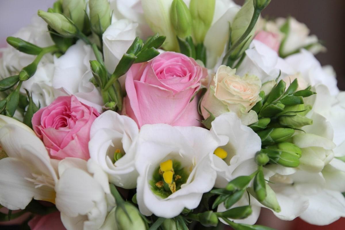 boeket, pastel, rozen, witte bloem, regeling, decoratie, bloem, bloemen, bloesem, roze