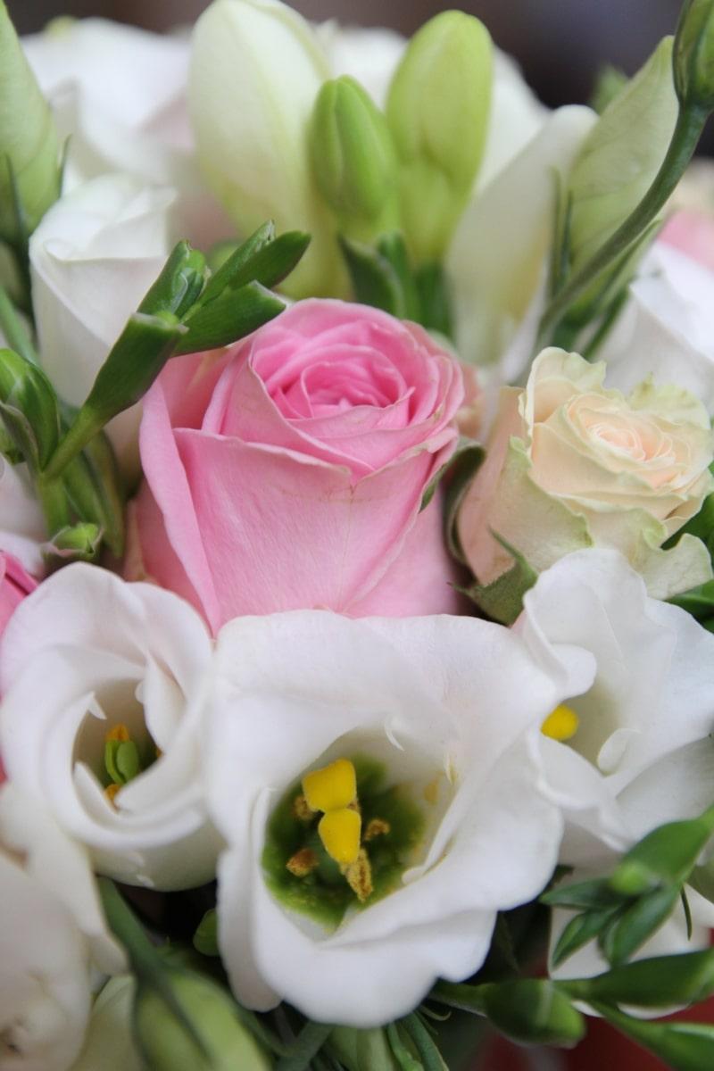 花, 花束, 装飾, ピンク, ローズ, ロマンス, 結婚式, 配置, 愛, 自然