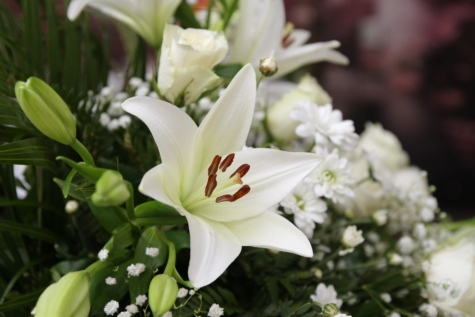 bouquet, decoration, lily, white flower, plant, flowers, blossom, flower, bloom, flora