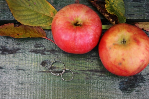 사과, 가 시즌, 반지, 로맨틱, 결혼 반지, 애플, 건강 한, 비타민, 신선한, 음식