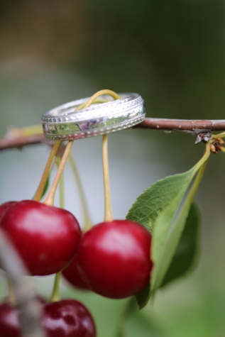 wedding, wedding ring, cherry, sweet, cherries, vitamin, nature, shrub, dessert, berry