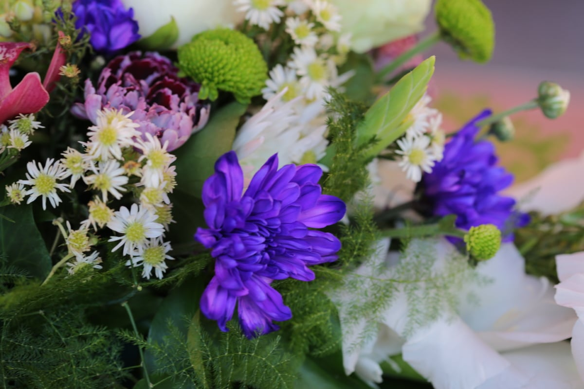 bouquet, garden, blossom, flowers, flower, nature, herb, plant, spring, leaf