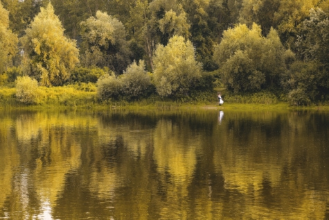bride, national park, river, riverbank, wedding, reflection, landscape, water, lake, tree