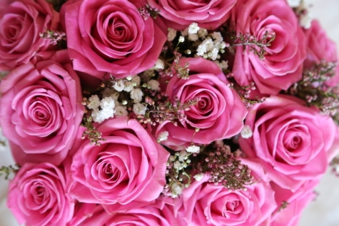 růžová, růže, svatební kytice, řebříček obecný, okvětní lístek, kytice, květ, romantika, manželství, svatba