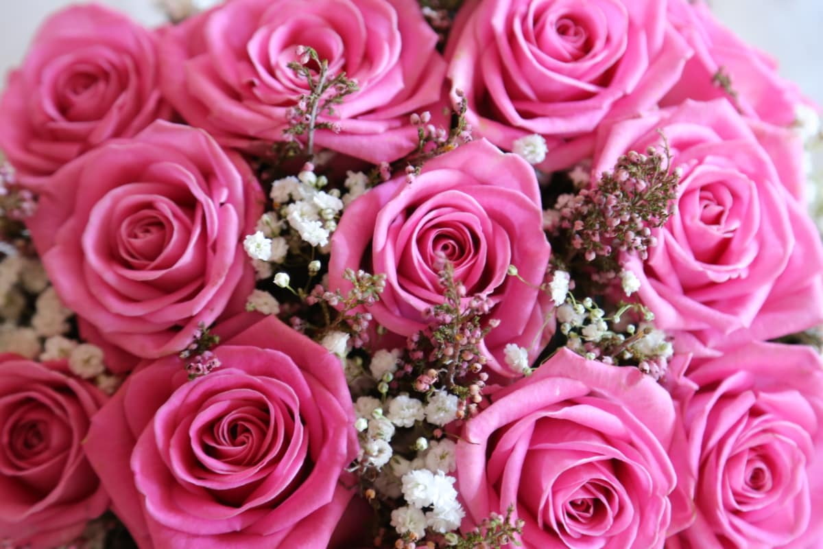 anniversary, pastel, pinkish, wedding bouquet, wedding, rose, love, marriage, flower, bouquet