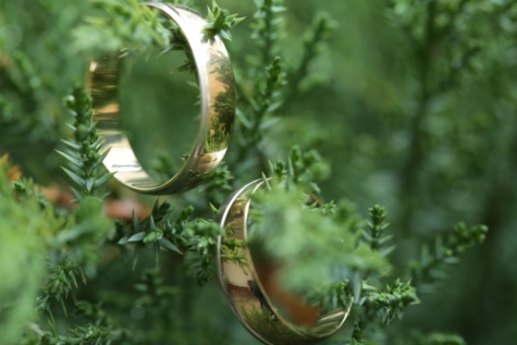 branches, conifers, evergreen, gold, handmade, rings, shining, wedding ring, nature, blur