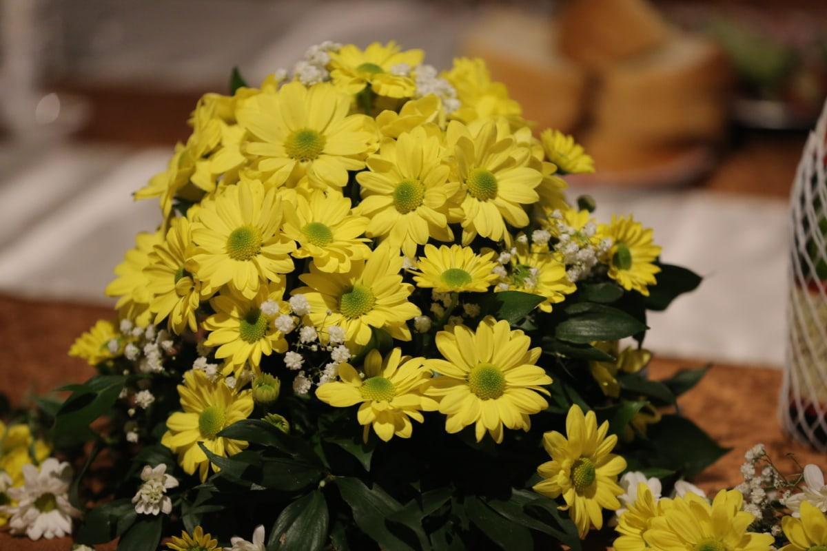 flowers, greenish yellow, interior decoration, still life, yellow leaves, flower, plant, nature, garden, blossom