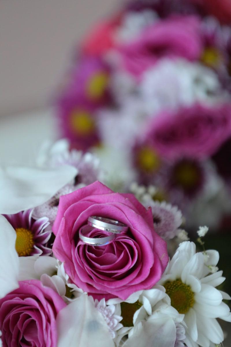 marriage, ritual, tradition, wedding bouquet, wedding ring, rose, arrangement, pink, bouquet, decoration