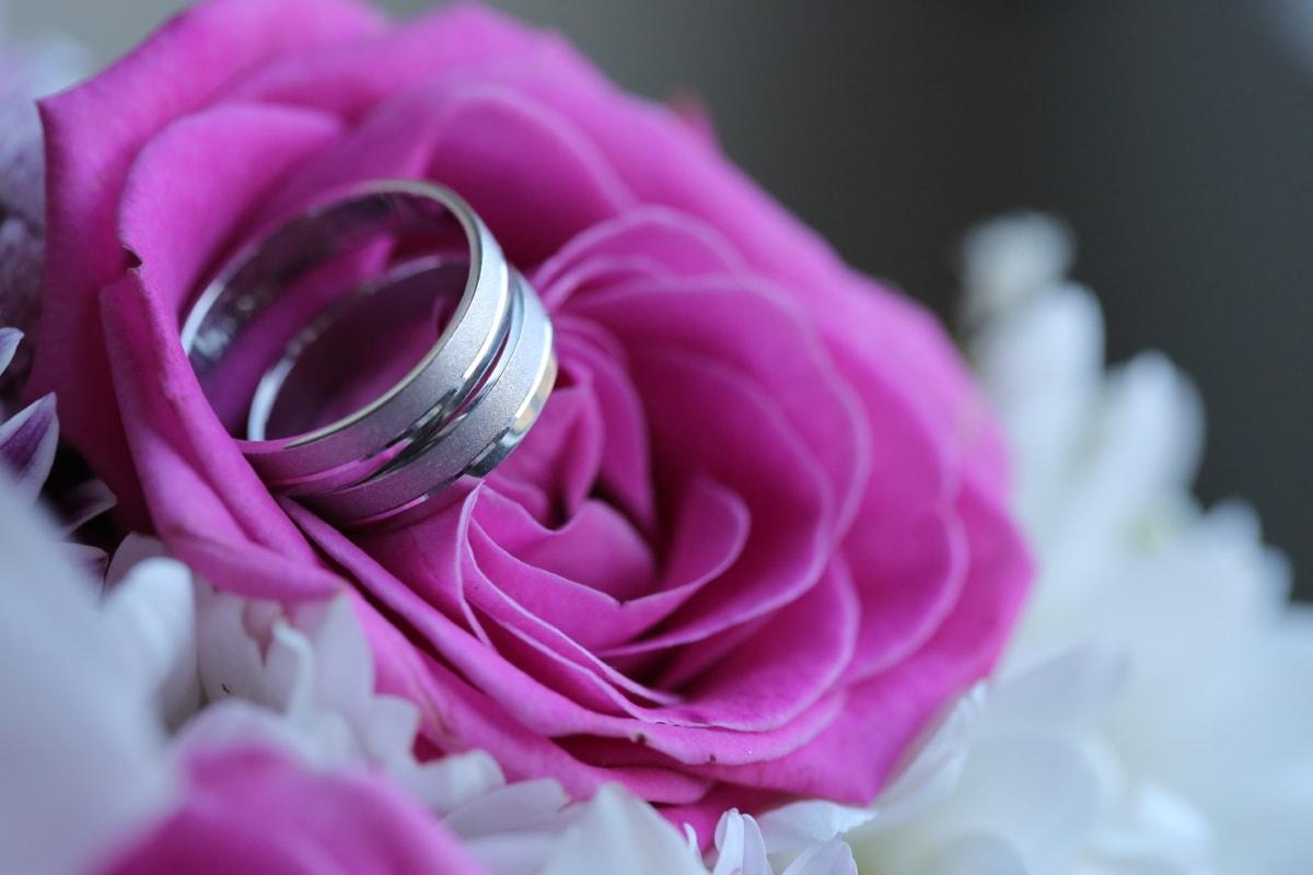 close-up, elegance, platinum, wedding, wedding bouquet, wedding ring, pink, petal, flower, marriage