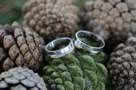 close-up, conifers, details, gold, handmade, jewelry, platinum, wedding ring, herb, brown