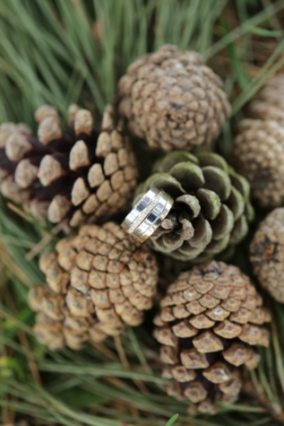 brilliant, conifers, evergreen, love, platinum, romance, wedding ring, pine, cone, tree