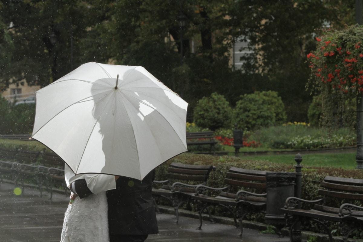 novia, Jardín, abrazo, beso, lluvia, romántica, paraguas, vestido de novia, personas, tiempo en