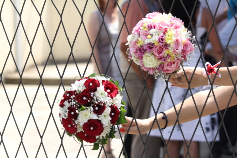 crowd, fence, hands, holding, wedding bouquet, flower, rose, summer, wedding, nature