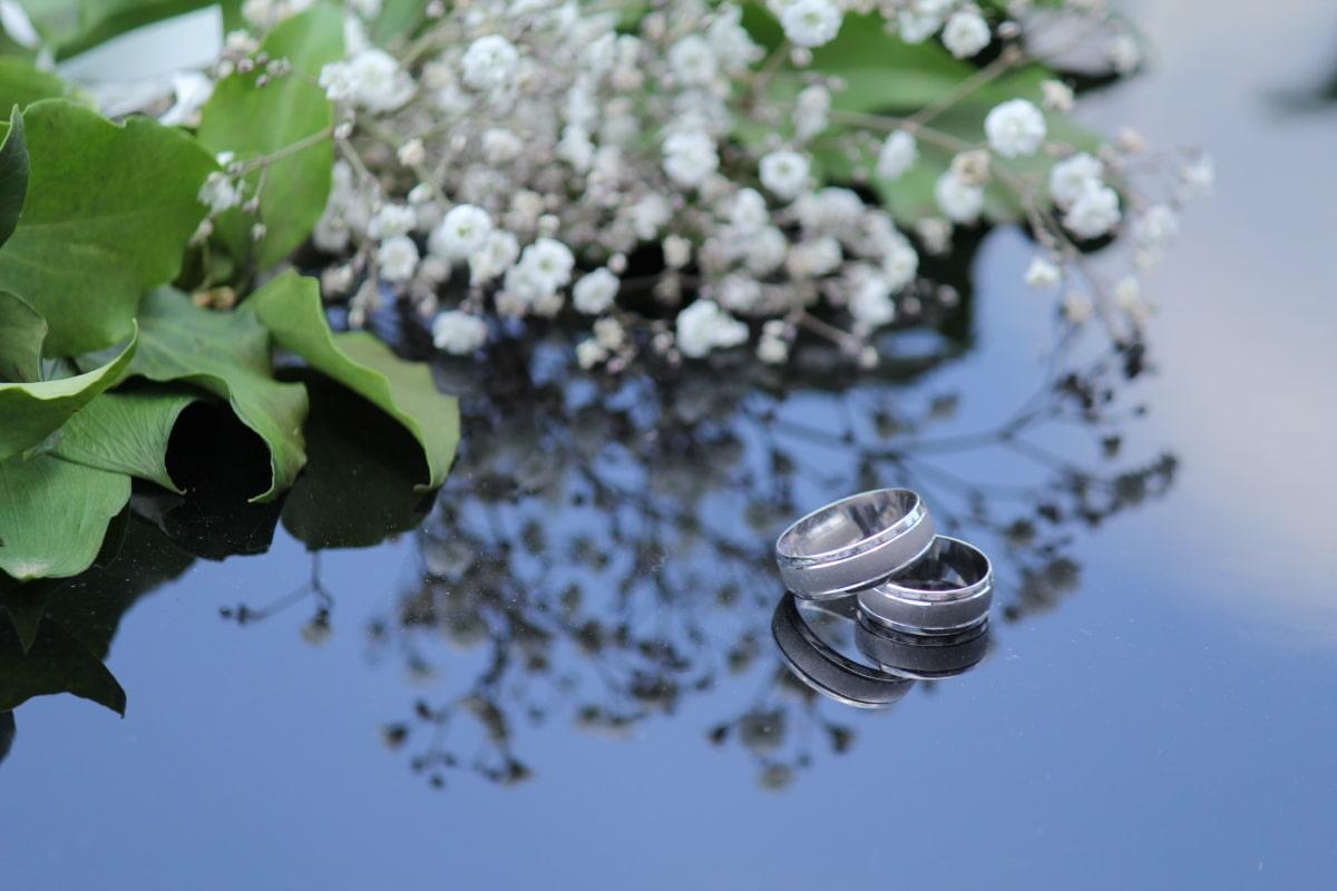 золото, ювелирные изделия, металл, Платина, Кольца, серебро, обручальное кольцо, завод, цветок, цвет