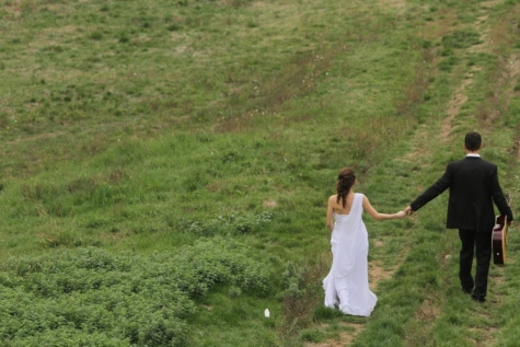 bride, downhill, groom, guitar, guitarist, happiness, road, romantic, grass, outdoors