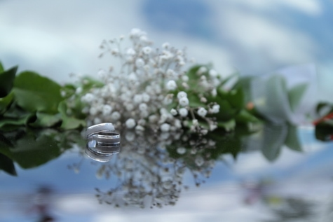 jewelry, metallic, platinum, reflection, rings, wedding ring, herb, environment, transparent, flower