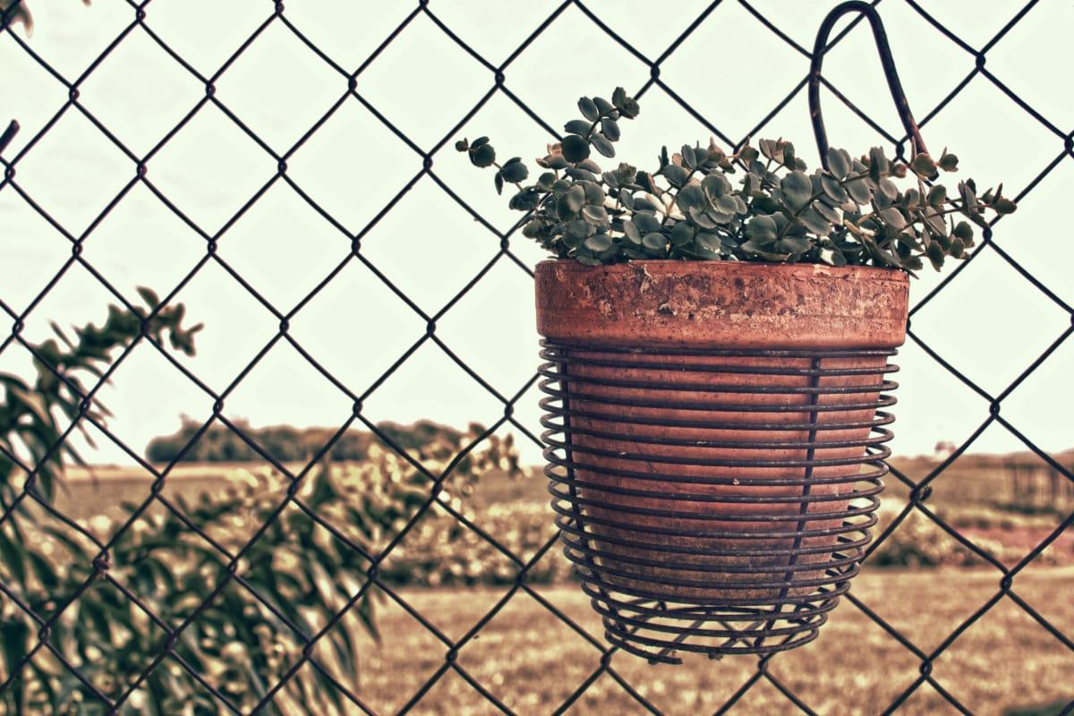 flowerpot, flowers, terracotta, wires, fence, iron, barrier, wire, cage, steel