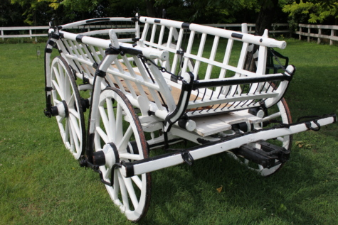 carriage, village, backyard, wheel, grass, recreation, equipment, park, vehicle, cart