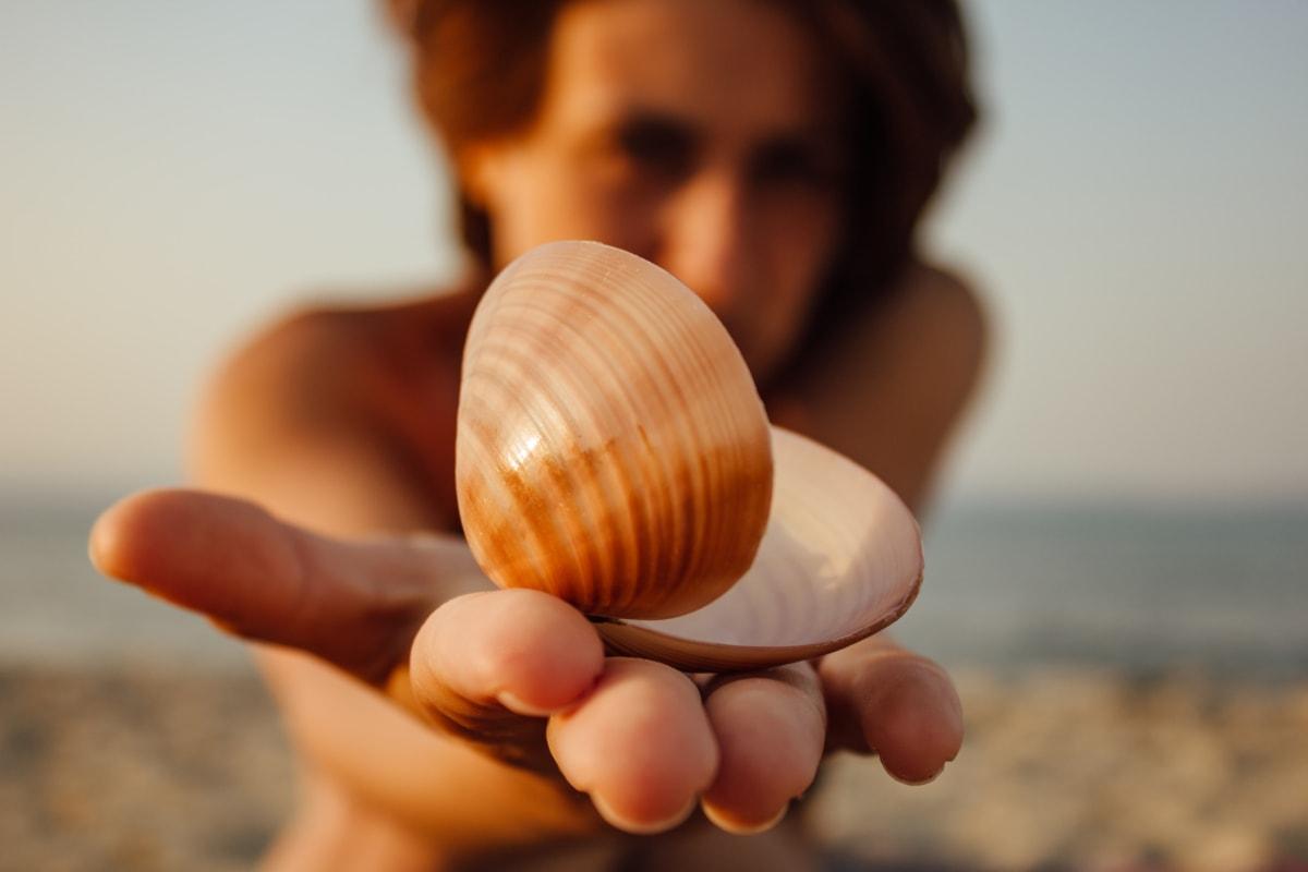 tuyệt đẹp, Mô hình ảnh, Cô bé xinh đẹp, vỏ sò, ngón tay, Bãi biển, bàn tay, chân dung, vỏ, người phụ nữ