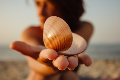 seashell, gorgeous, pretty girl, holding, sunshine, beach, woman, mollusk, conch, sand