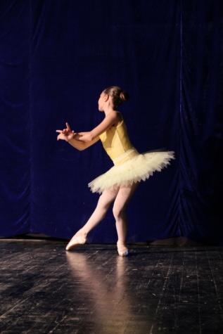 Ballett, Performance, Eleganz, Tänzerin, Theater, Musik, Person, Performer, Entertainer