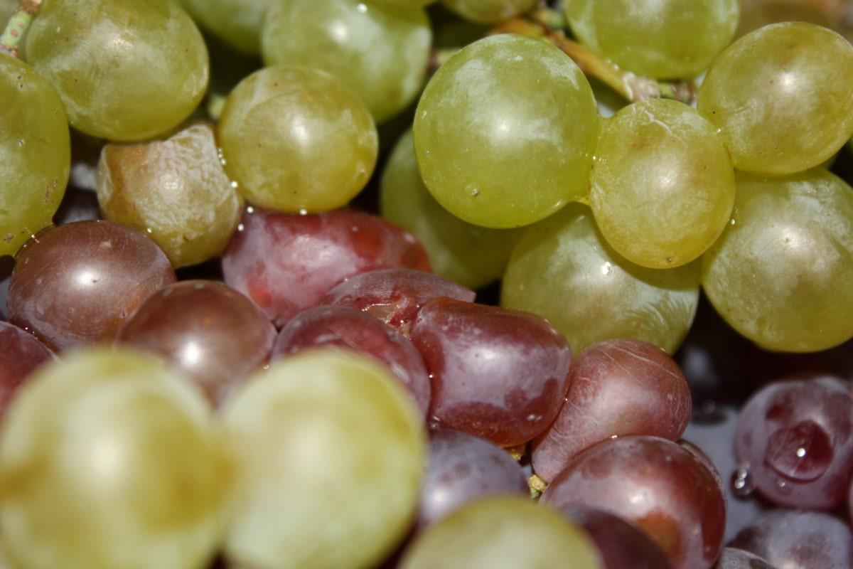 grapes, fruit, close-up, organic, grape, food, vine, healthy, fresh, bunch