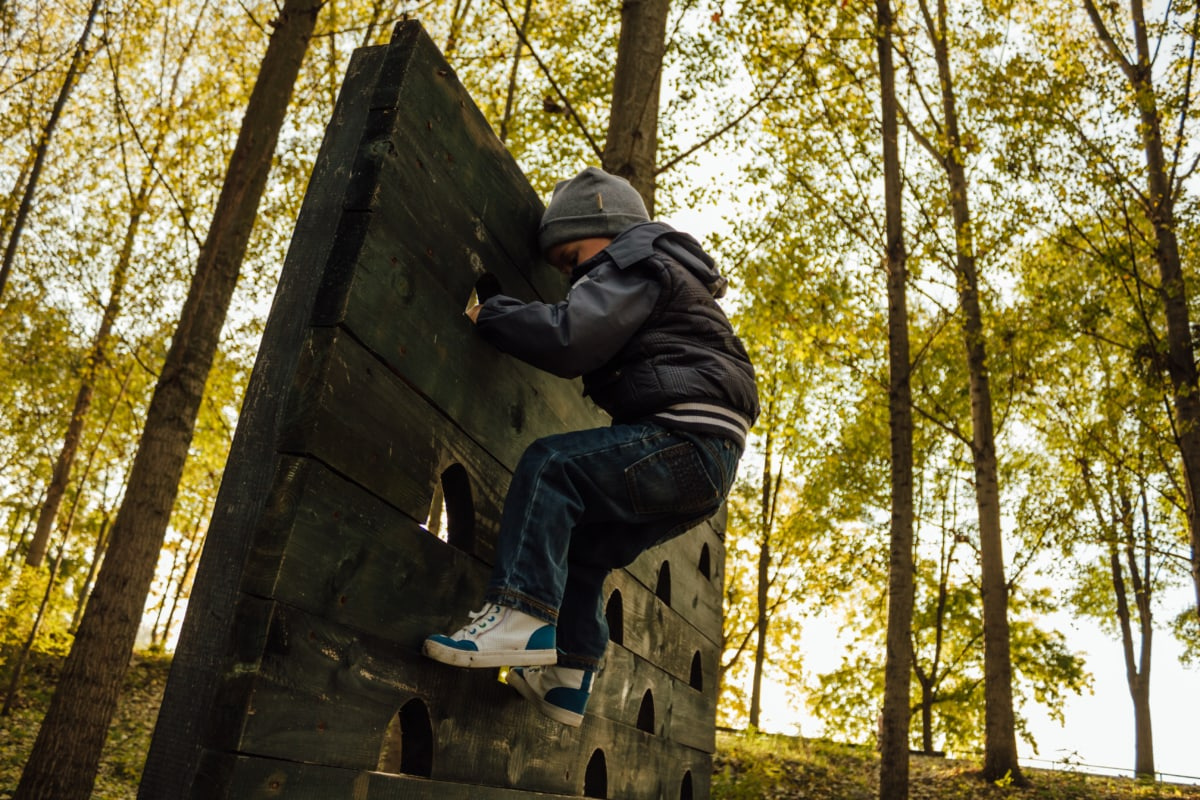 boy, playground, climbing, climber, child, forest, skateboard, trees, board, tree