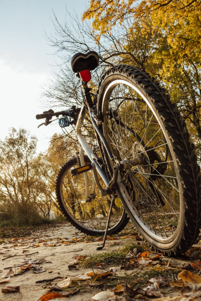 mountain bike, tire, sport, wheels, bicycle, wheel, bike, vehicle, device, fun