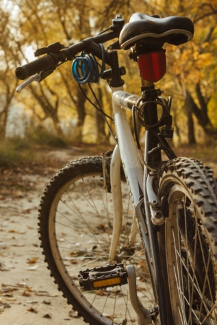 mountain bike, landscape, sport, forest road, bicycle, seat, cycling, wheel, vehicle, ride