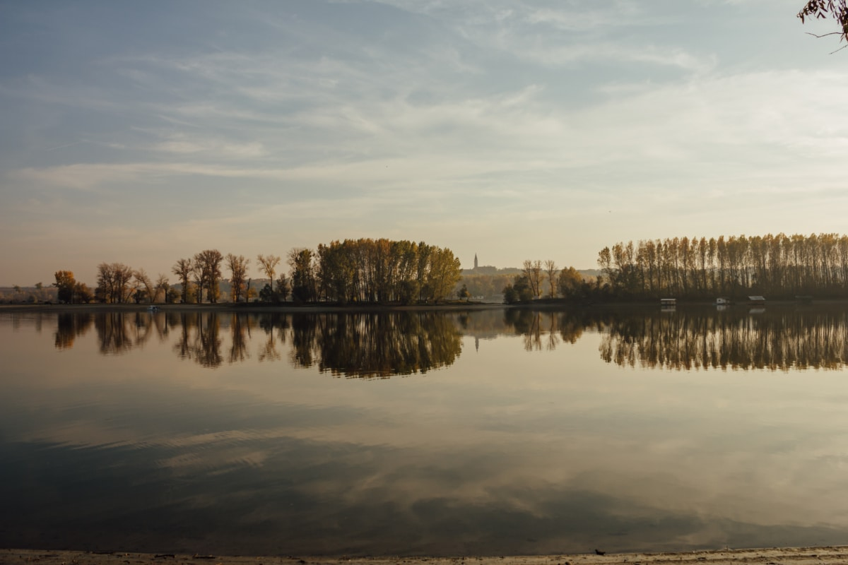 trees, lakeside, calm, atmosphere, environment, wilderness, water, landscape, sunset, reflection