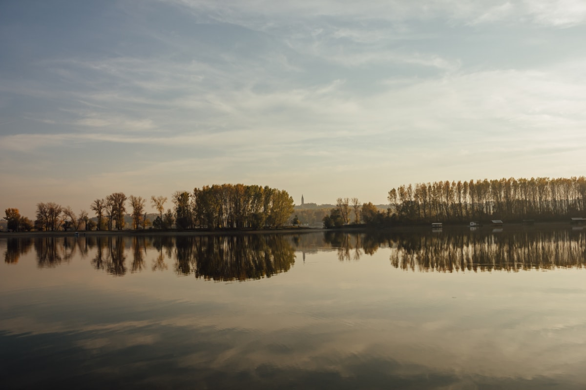 lake, landscape, forest, atmosphere, water, reflection, tree, trees, outdoors, shore