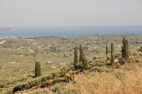 panorama, cypress, hillside, ocean, island, greece, wilderness, landscape, architecture, vineyard