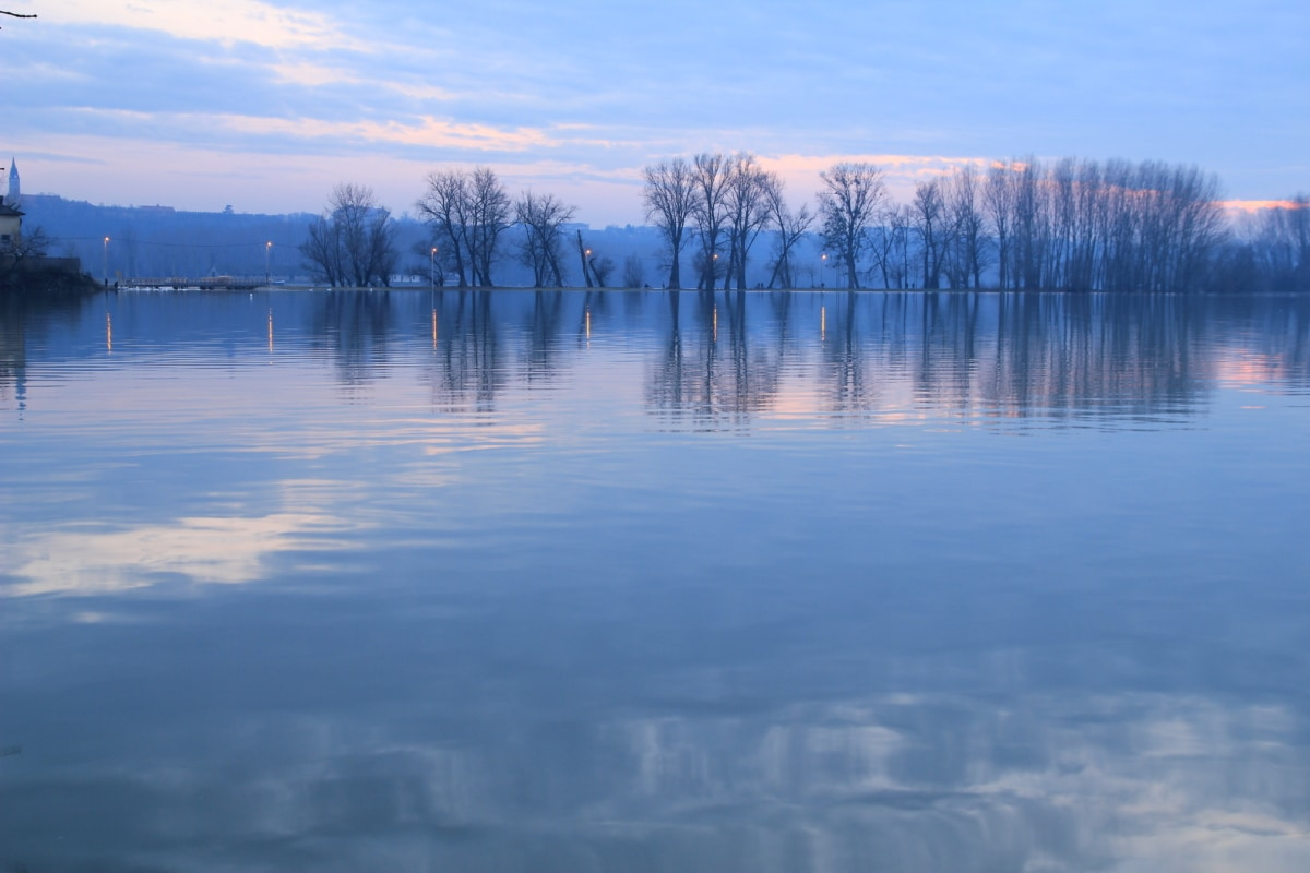 lake, twilight, calm, placid, forest, landscape, water, tree, reflection, dawn