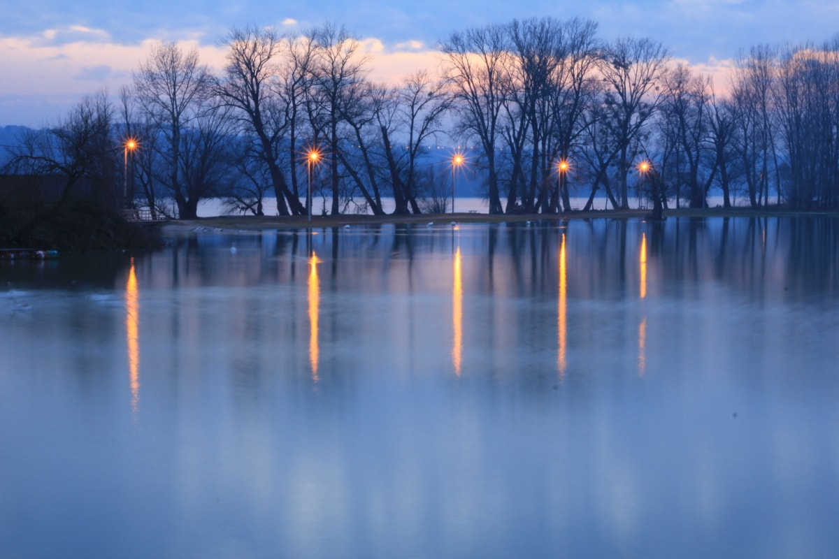 twilight, frozen, lake, cold water, water, tree, fountain, reflection, landscape, structure