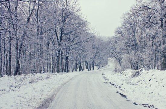 novembre, Itinéraire, gel, route forestière, froide, météo, arbre, forêt, paysage, neige