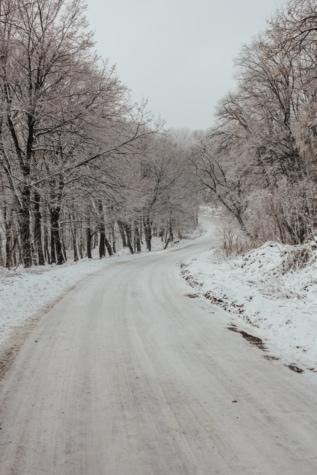 afdaling, helling, bosweg, Winter, weg, weer, landschap, koude, mist, vorstost