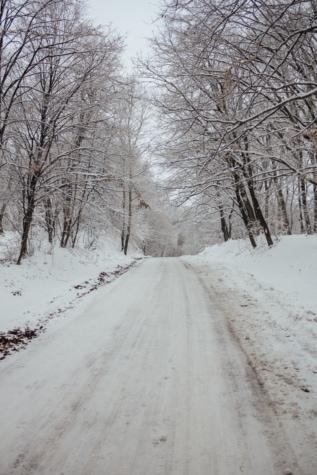 padina, šumska cesta, nadmorska visina, zima, jasika, Mraz, hladno, drvo, magla, snijeg
