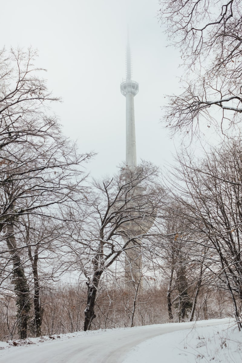 forest road, tower, winter, aspen, column, cold, structure, landscape, frost, tree