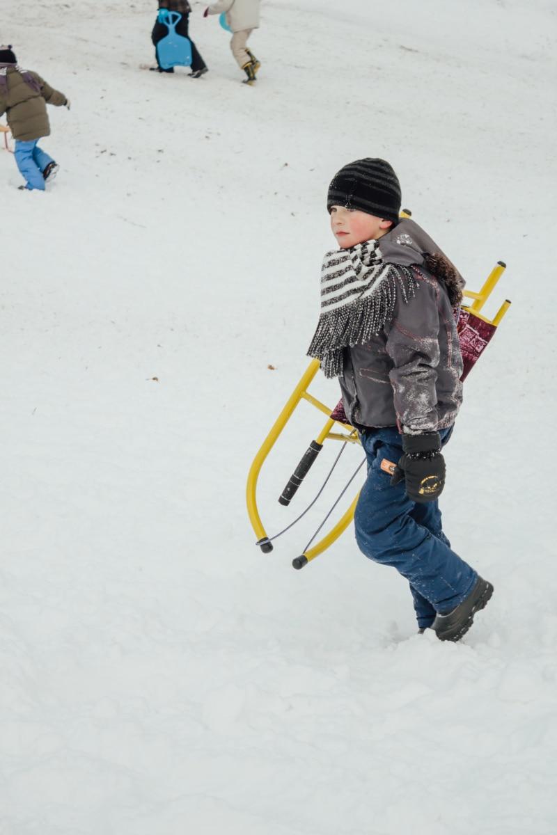 boy, school child, sled, playing, fun, joy, child, snow, winter, sport
