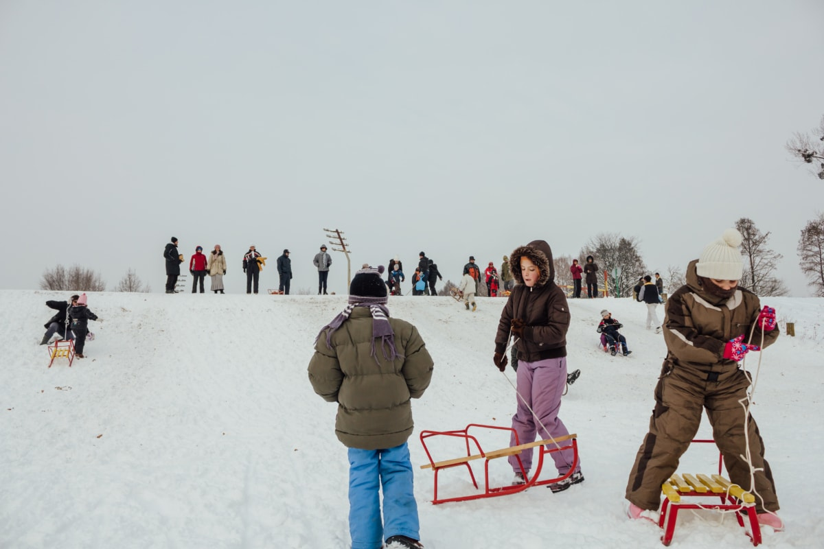 downhill, slope, sled, childhood, winter, fun, mountain, people, cold, child