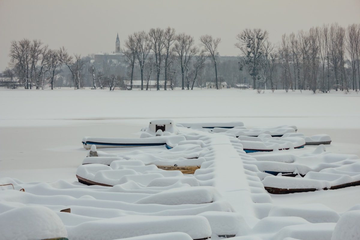 harbour, snow, river boat, riverbank, winter, white, landscape, cold, forest, ice
