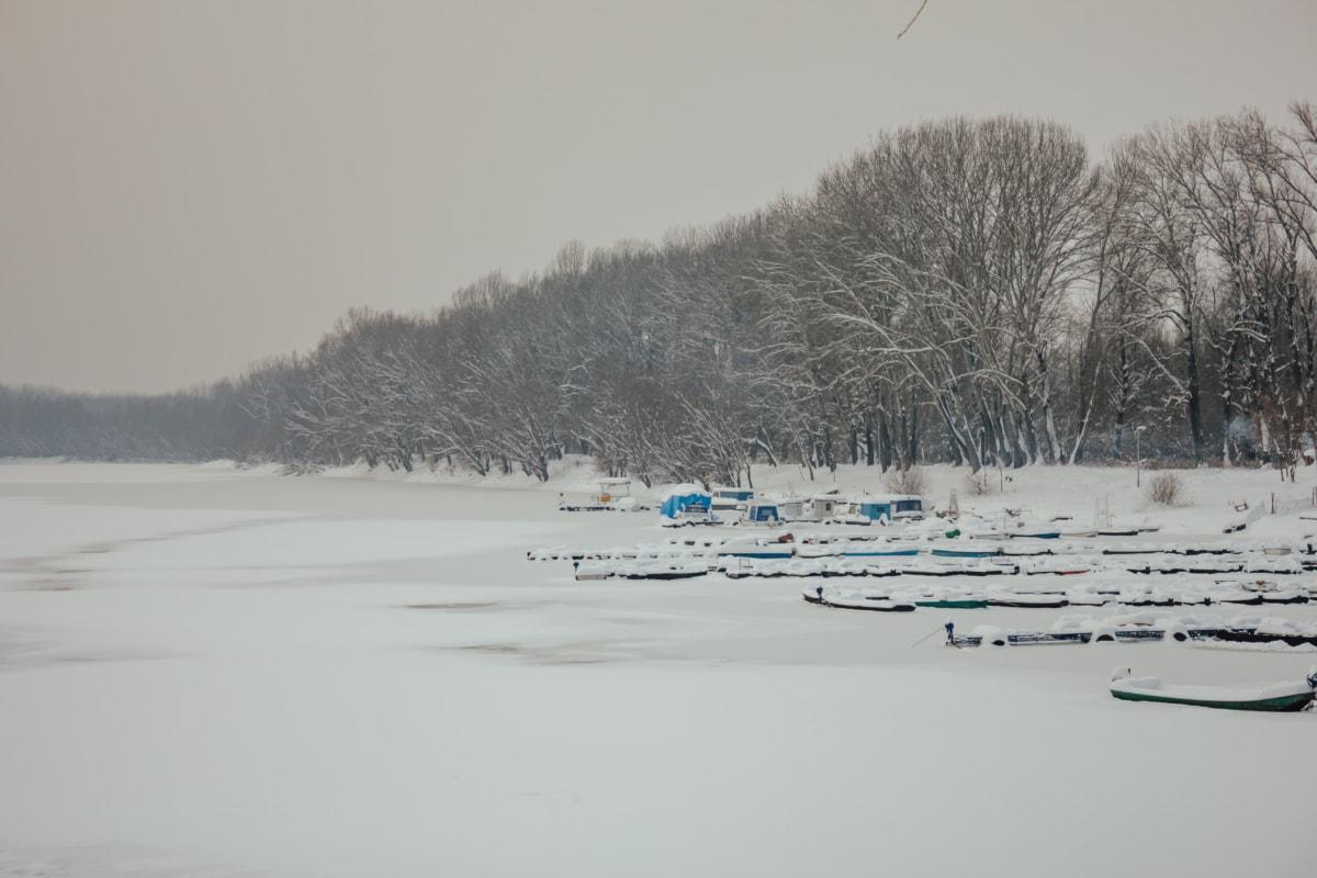lake, frozen, harbor, snowy, boats, landscape, snow, forest, winter, weather