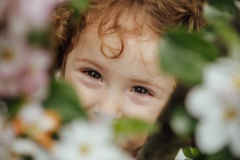 mata, anak, potret, wajah, Main-Main, bunga, senyum, menyembunyikan, Manis, bahagia