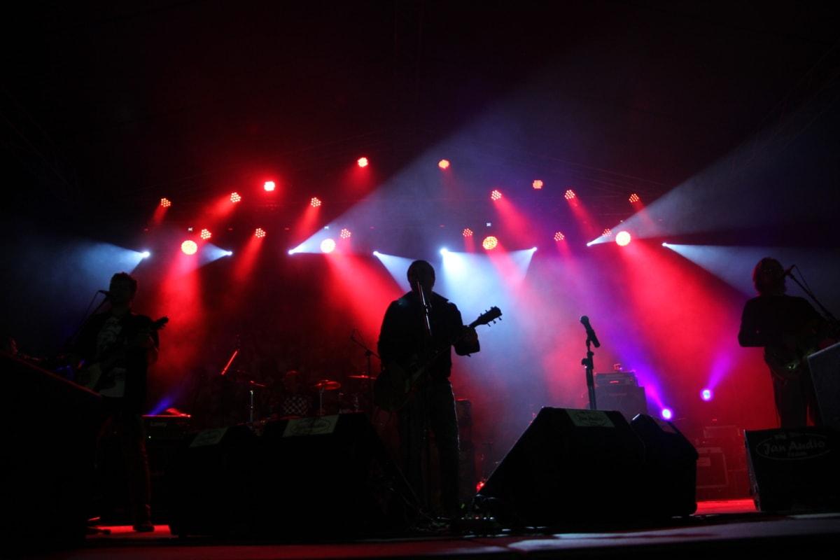 rock concert, nightclub, discotheque, singer, band, musician, concert, music, performance, festival