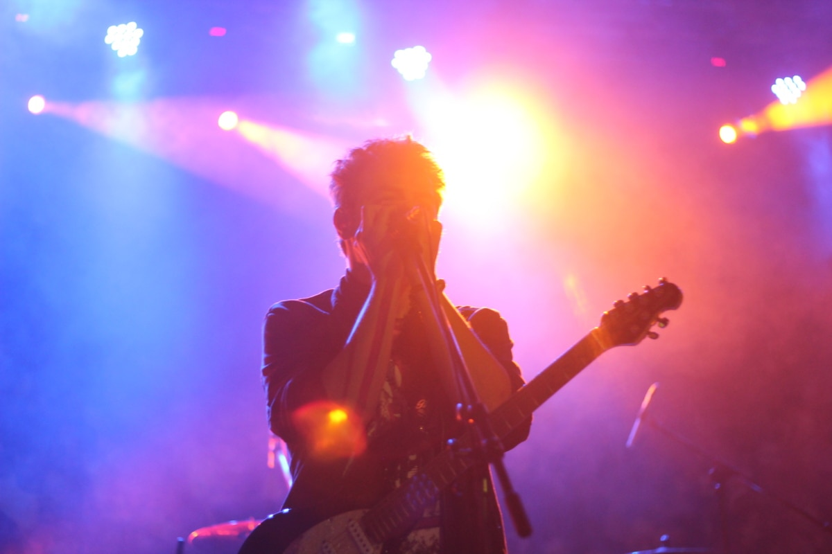 singer, song, concert, music, microphone, guitarist, musician, stage, performance, platform