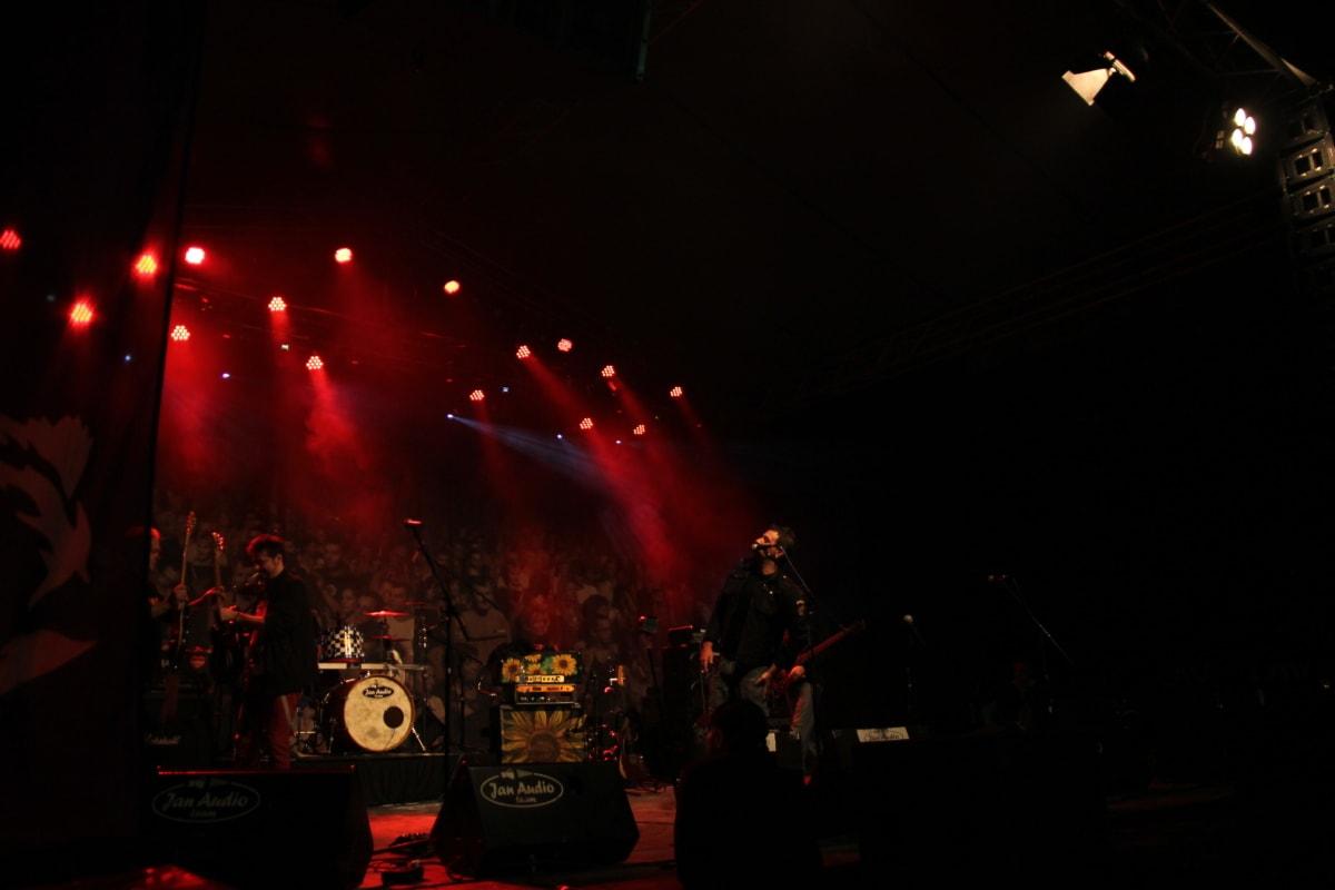 singer, discotheque, entertainment, nightclub, music, concert, musician, festival, performance, band